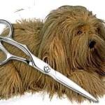 Стрижка собак своими руками