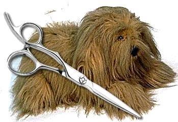 как самой подстричь собаку фото