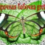 Бабочка с прозрачными крыльями.