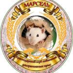 Клуб декоративных крыс