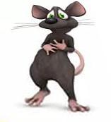 крысы и гороскоп