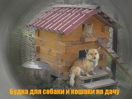 Будка для собаки и кошки своими руками